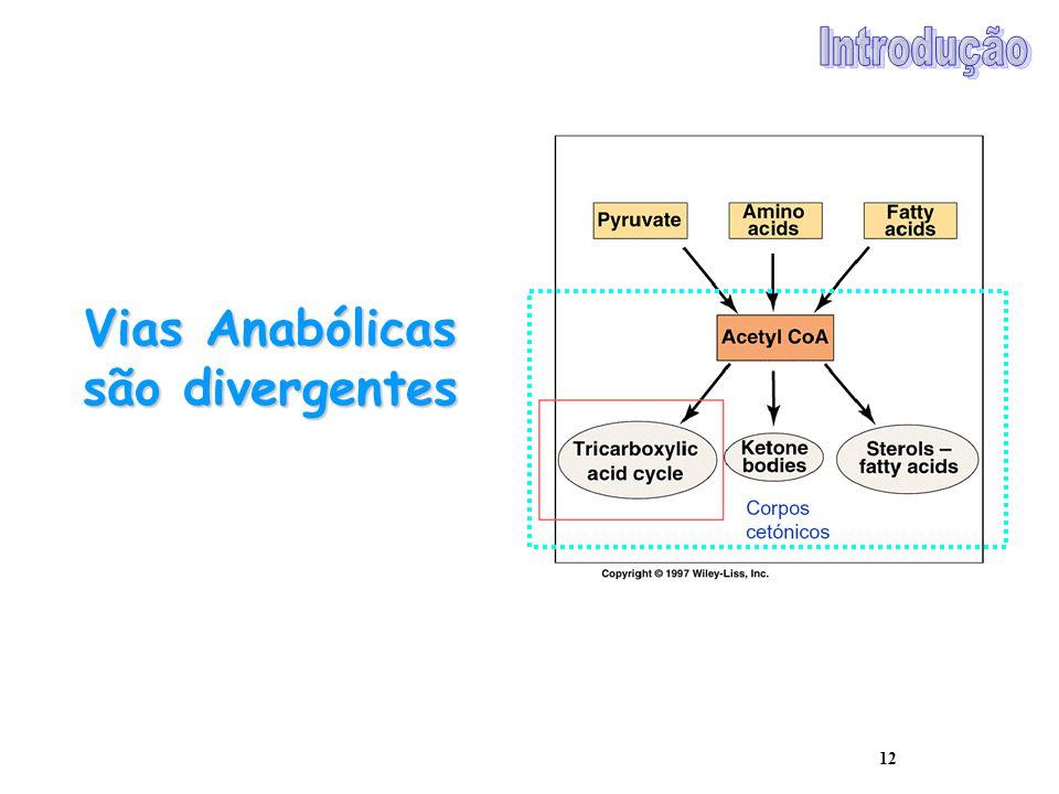 12 Vias Anabólicas são divergentes