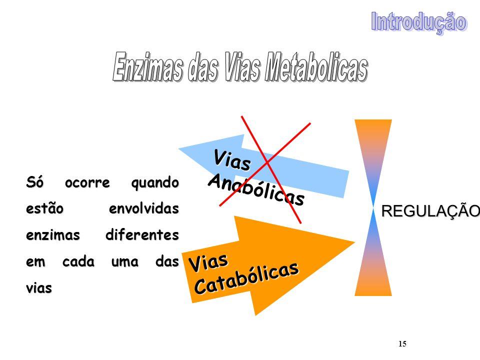 15 Vias Anabólicas Vias Catabólicas REGULAÇÃO Só ocorre quando estão envolvidas enzimas diferentes em cada uma das vias