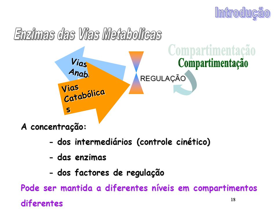 18 Vias Anabólicas Vias Catabólica s REGULAÇÃO A concentração: - dos intermediários (controle cinético) - das enzimas - dos factores de regulação Pode