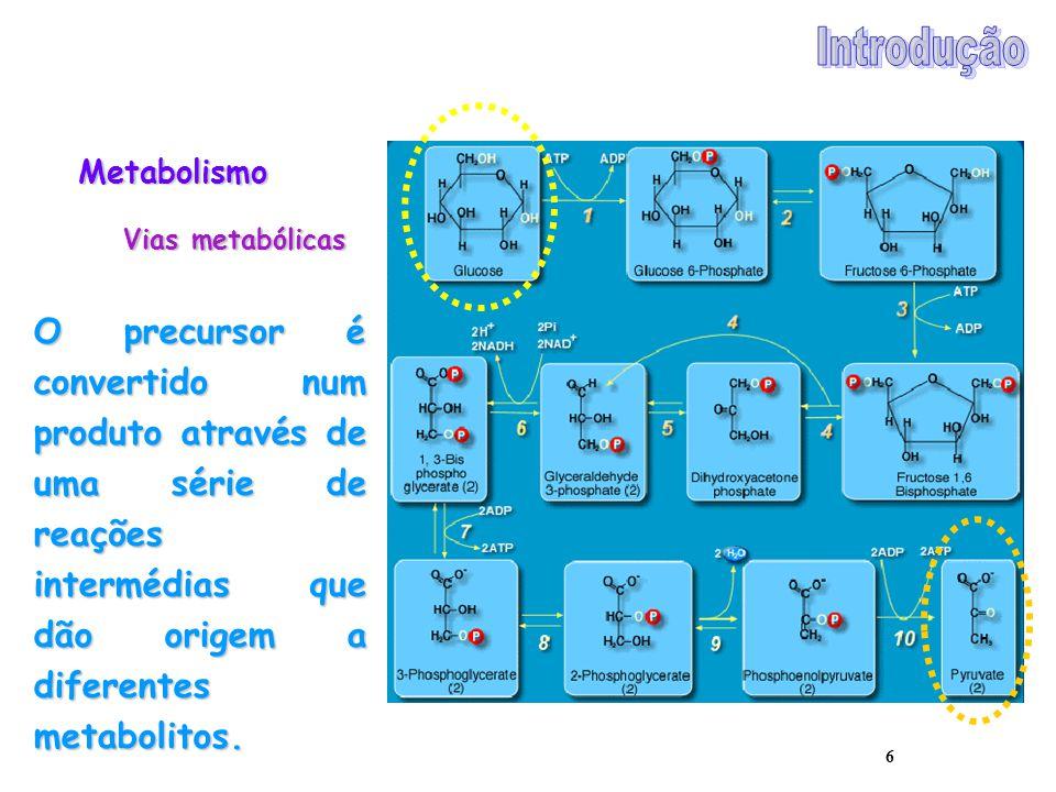 6 Metabolismo Vias metabólicas O precursor é convertido num produto através de uma série de reações intermédias que dão origem a diferentes metabolito