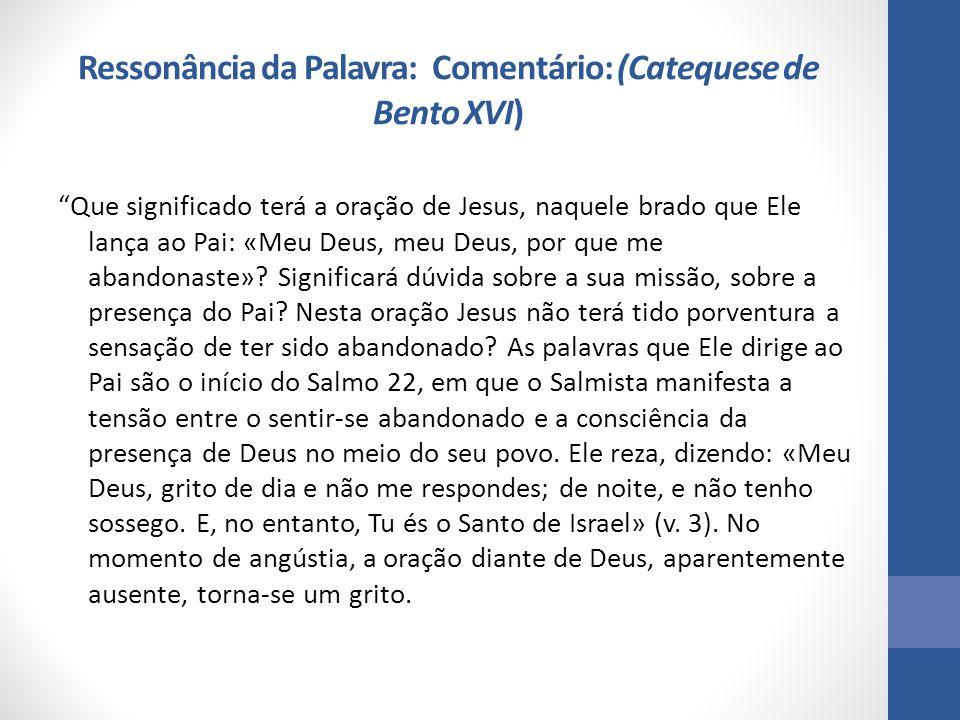 """Ressonância da Palavra: Comentário: (Catequese de Bento XVI) """"Que significado terá a oração de Jesus, naquele brado que Ele lança ao Pai: «Meu Deus, m"""
