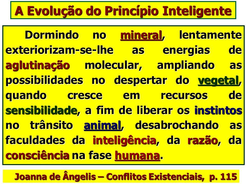 A Evolução do Princípio Inteligente O princípio espiritual adquire experiências, emoções e conhecimento através do trânsito pelos diferentes reinos da