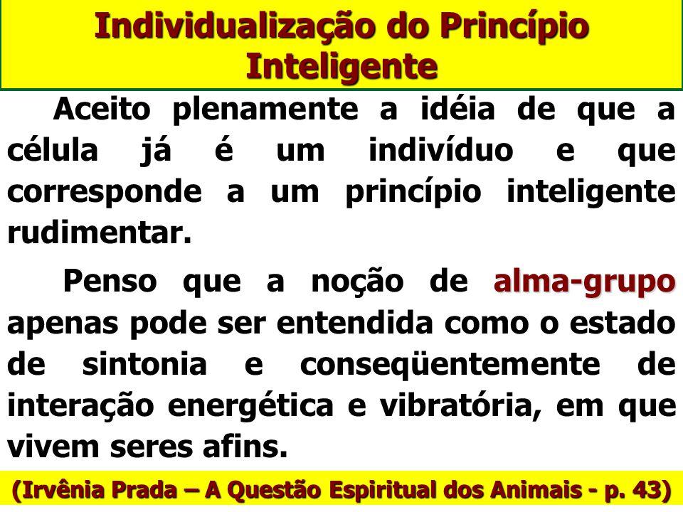 Individualização do Princípio Inteligente Há várias correntes de pensamento sobre este aspecto: - A que admite a individualização durante o processo d