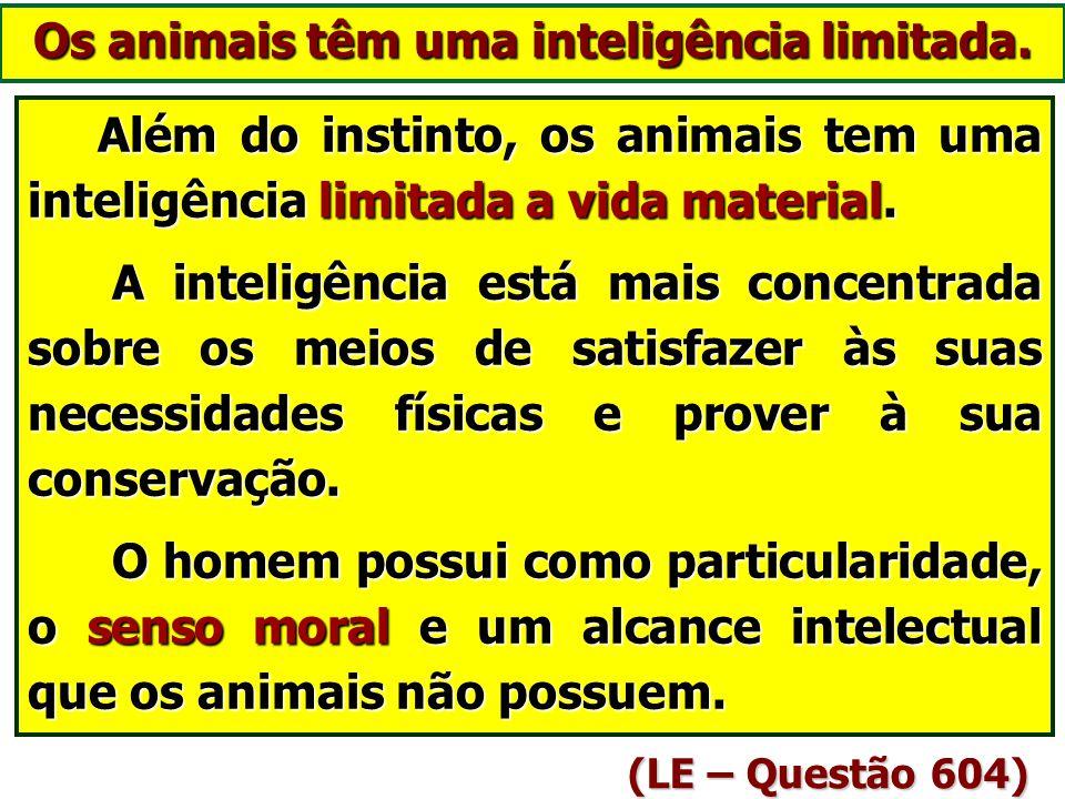 Os animais só agem por instinto? (A Gênese – cap. III, itens 11 a 13) O INSTINTO é a força oculta que solicita os seres orgânicos a atos espontâneos e