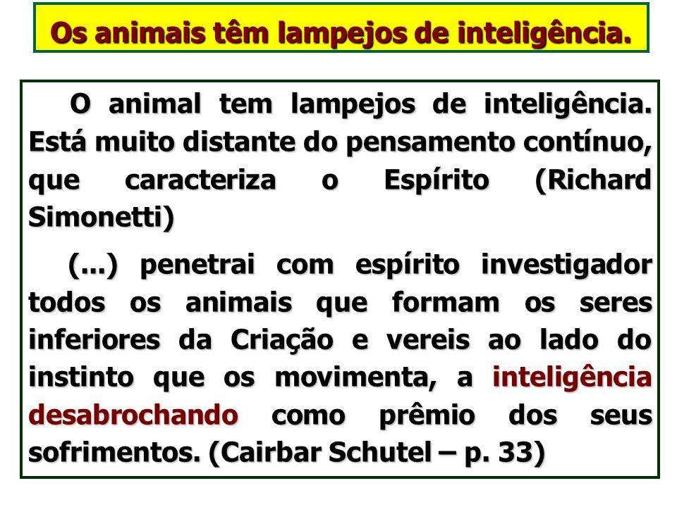 Os animais têm uma inteligência limitada. (LE – Questão 604) Além do instinto, os animais tem uma inteligência limitada a vida material. Além do insti