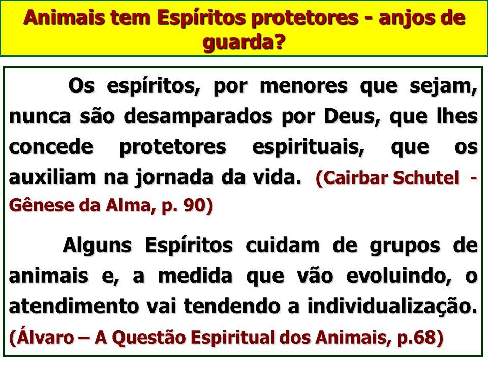 Animais no mundo espiritual Poderão ocorrer três situações: 1. Perispírito de animais desencarnados, no intervalo das encarnações; 2. Criações fluídic