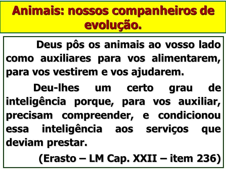 Animais tem Espíritos protetores - anjos de guarda? Os espíritos, por menores que sejam, nunca são desamparados por Deus, que lhes concede protetores
