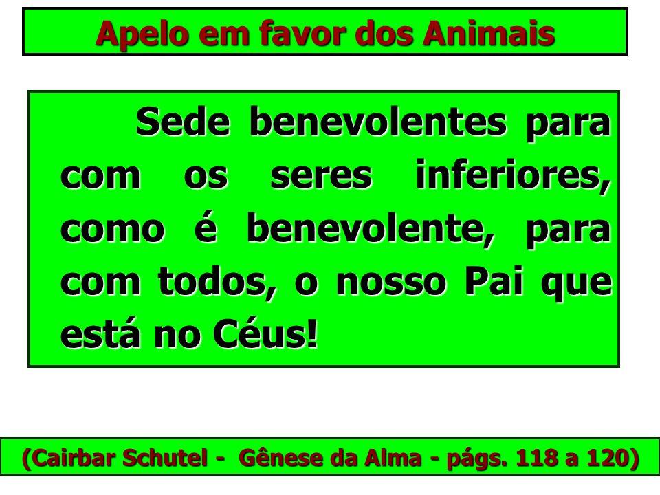 Apelo em favor dos Animais Os animais domésticos são vossos companheiros de existência terrestre; como vós, eles vieram progredir, estudar, aprender!