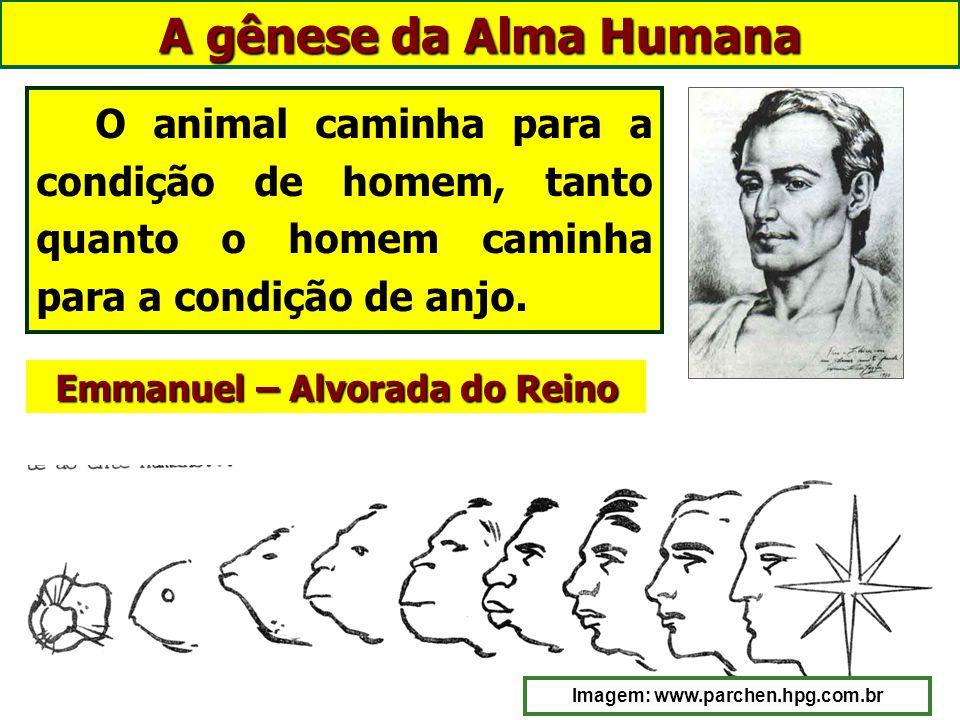 A gênese da Alma Humana animaram animais, Todos os Espíritos que agora animam corpos humanos, num passado distante, animaram animais, onde adquiriram