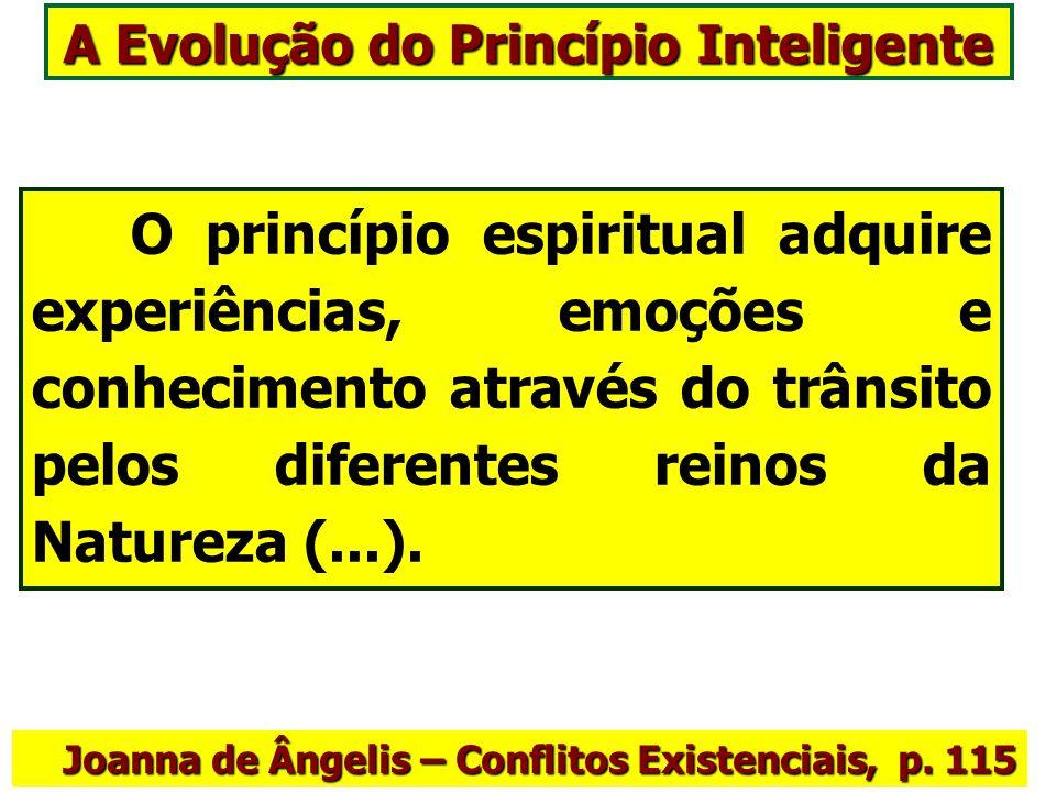 A Evolução do Princípio Inteligente O princípio espiritual adquire experiências, emoções e conhecimento através do trânsito pelos diferentes reinos da Natureza (...).