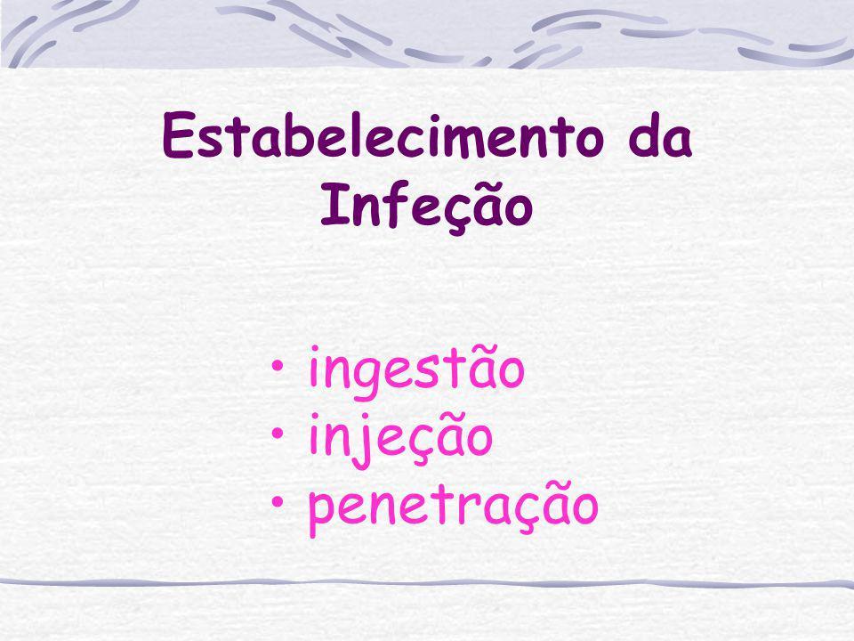 Habitat dos parasitos Tubo digestivo Mucosas/Epitélio Orgãos internos (fígado, cérebro) Sistema fagocítico mononuclear Sangue, linfa e líquidos inters