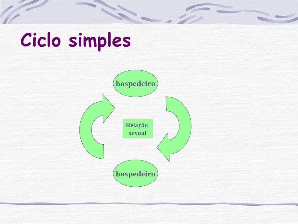 Ciclo Conhecer o ciclo biológico do parasito permite que se entenda a sua biologia e relações com os hospedeiros, consequentemente a sua patogenicidad