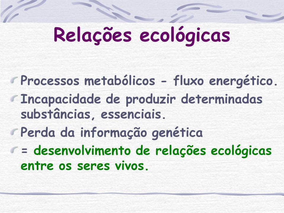 Relações ecológicas Processos metabólicos - fluxo energético.