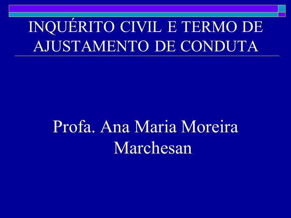 INQUÉRITO CIVIL E TERMO DE AJUSTAMENTO DE CONDUTA Profa. Ana Maria Moreira Marchesan