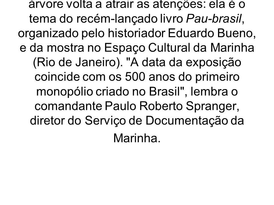Brasil Colonial O pau-brasil em nossas raízes, montada O pau-brasil marca um ponto de partida na história de nosso país: sua exploração deflagra o pri