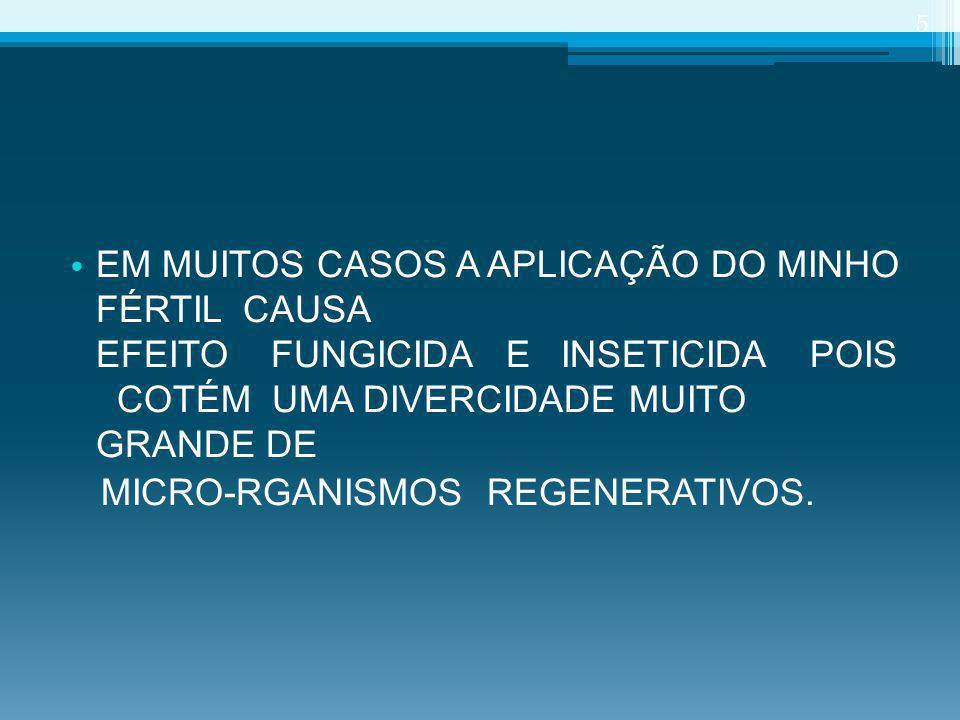 CLIENTES PIMENTÃO 36
