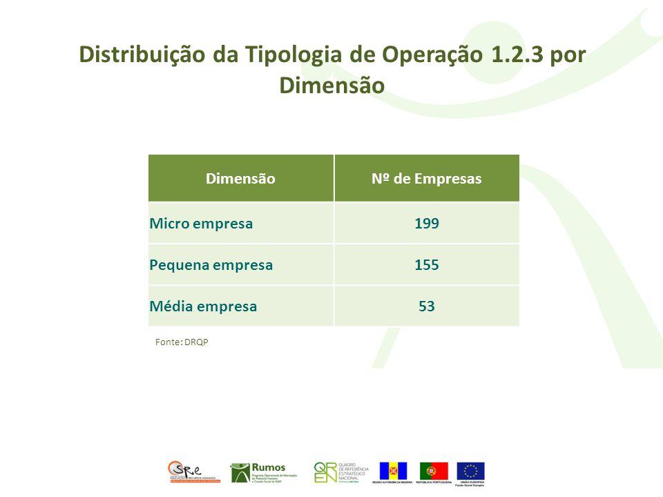 Distribuição da Tipologia de Operação 1.2.3 por Dimensão DimensãoNº de Empresas Micro empresa199 Pequena empresa155 Média empresa53 Fonte: DRQP
