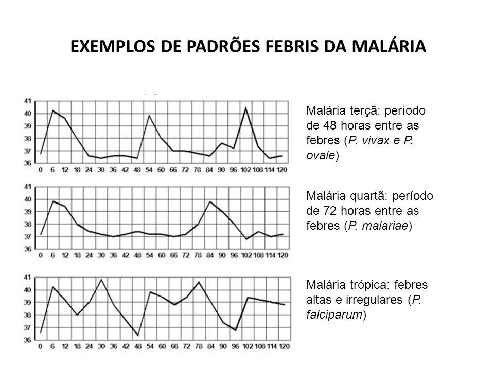 EXEMPLOS DE PADRÕES FEBRIS DA MALÁRIA Acesso malárico Malária terçã: período de 48 horas entre as febres (P.