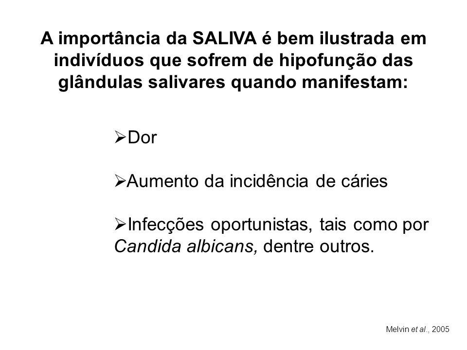 Melvin et al., 2005 A importância da SALIVA é bem ilustrada em indivíduos que sofrem de hipofunção das glândulas salivares quando manifestam:  Dor 