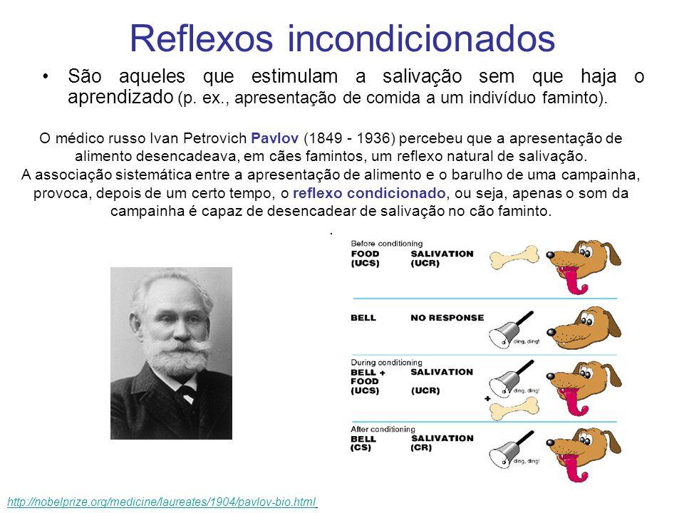 Reflexos condicionados http://nobelprize.org/medicine/laureates/1904/pavlov-bio.htmhttp://nobelprize.org/medicine/laureates/1904/pavlov-bio.htm l Reflexos condicionados São os que necessitam de experiência prévia, repetitiva e associativa entre alimentação e olfação/visão.
