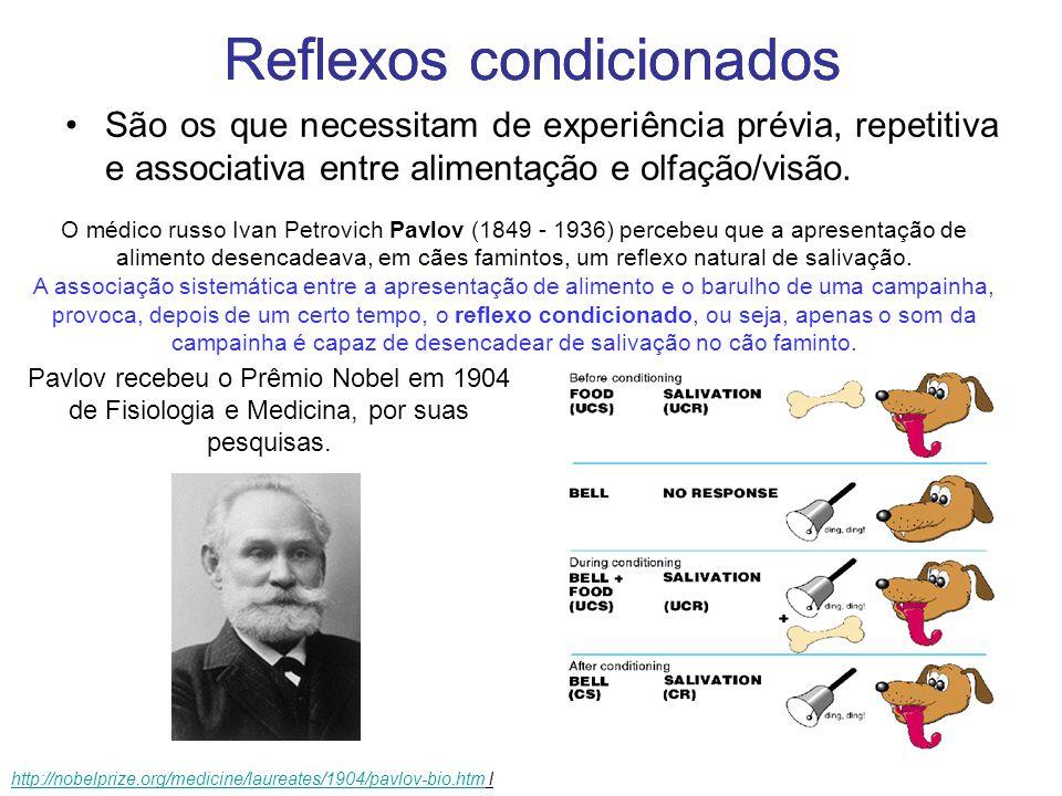 Reflexos condicionados São os que necessitam aprendizado prévio e repetitivo, como a olfação e a visão.