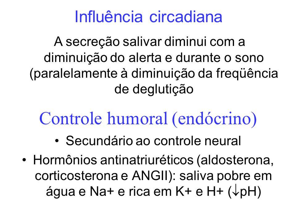 Controle humoral (endócrino) Secundário ao controle neural Hormônios antinatriuréticos (aldosterona, corticosterona e ANGII): saliva pobre em água e N
