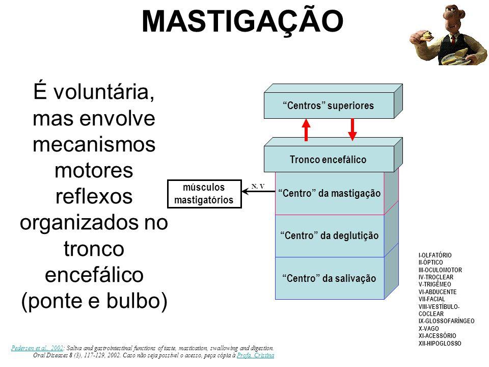 """""""Centro"""" da salivação """"Centro"""" da deglutição """"Centro"""" da mastigação Tronco encefálico """"Centros"""" superiores músculos mastigatórios N. V I-OLFATÓRIO II-"""