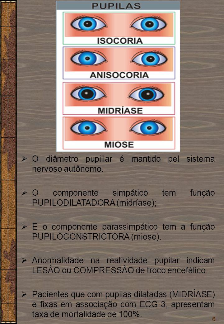 6  O diâmetro pupillar é mantido pel sistema nervoso autônomo.  O componente simpático tem função PUPILODILATADORA (midríase);  E o componente para