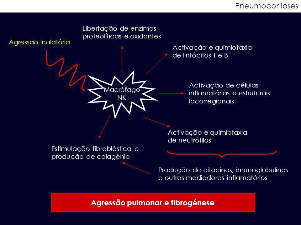 Pneumoconioses Agressão inalatória Macrófago NK Activação de células inflamatórias e estruturais locorregionais Activação e quimiotaxia de neutrófilos