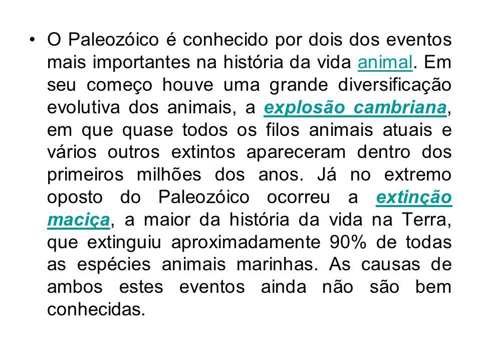 O Paleozóico é conhecido por dois dos eventos mais importantes na história da vida animal. Em seu começo houve uma grande diversificação evolutiva dos