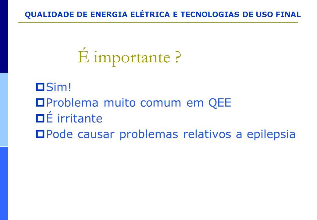 QUALIDADE DE ENERGIA ELÉTRICA E TECNOLOGIAS DE USO FINAL É importante ?  Sim!  Problema muito comum em QEE  É irritante  Pode causar problemas rel