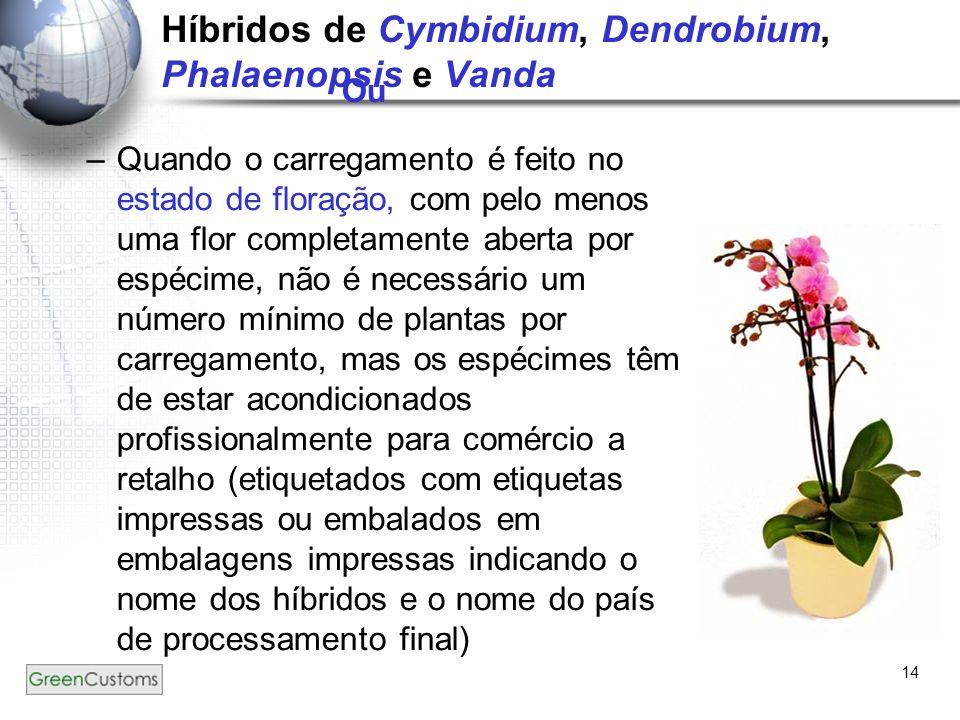14 Híbridos de Cymbidium, Dendrobium, Phalaenopsis e Vanda Ou –Quando o carregamento é feito no estado de floração, com pelo menos uma flor completame
