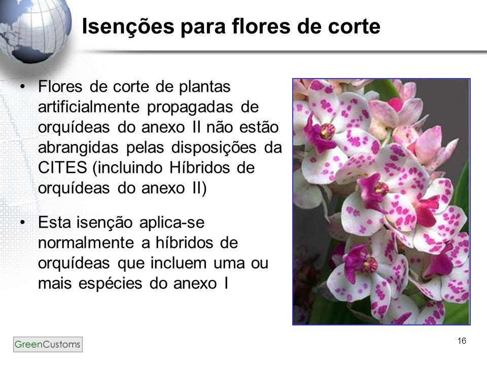 16 Isenções para flores de corte Flores de corte de plantas artificialmente propagadas de orquídeas do anexo II não estão abrangidas pelas disposições