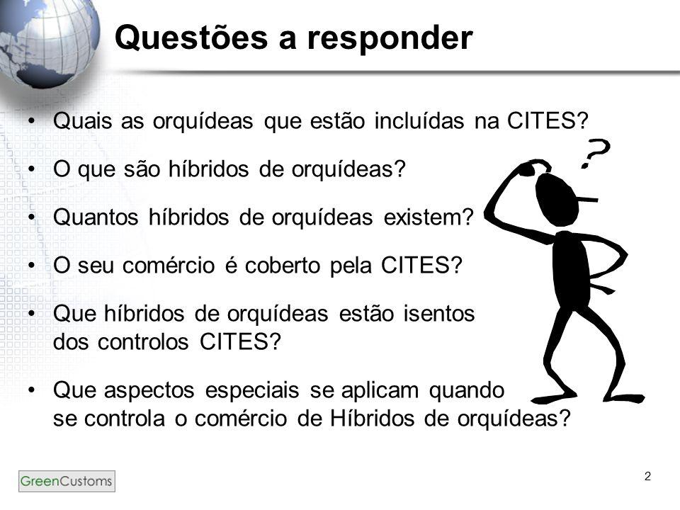 2 Questões a responder Quais as orquídeas que estão incluídas na CITES? O que são híbridos de orquídeas? Quantos híbridos de orquídeas existem? O seu