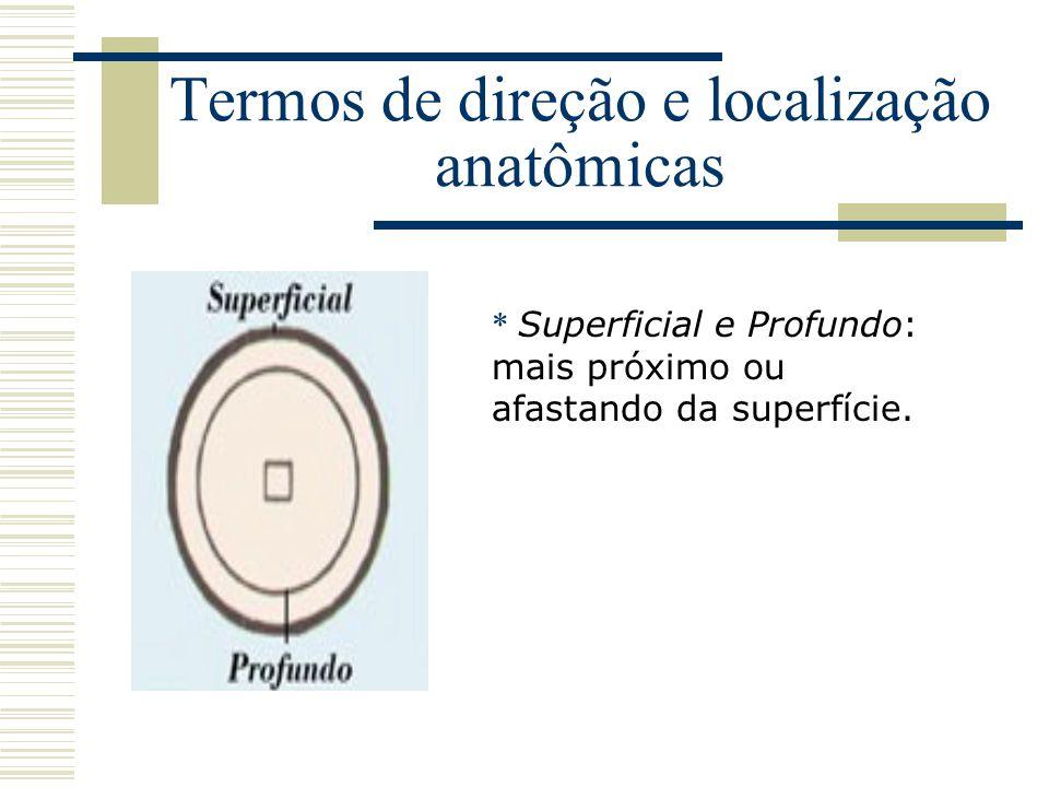 Termos de direção e localização anatômicas * Superficial e Profundo: mais próximo ou afastando da superfície.