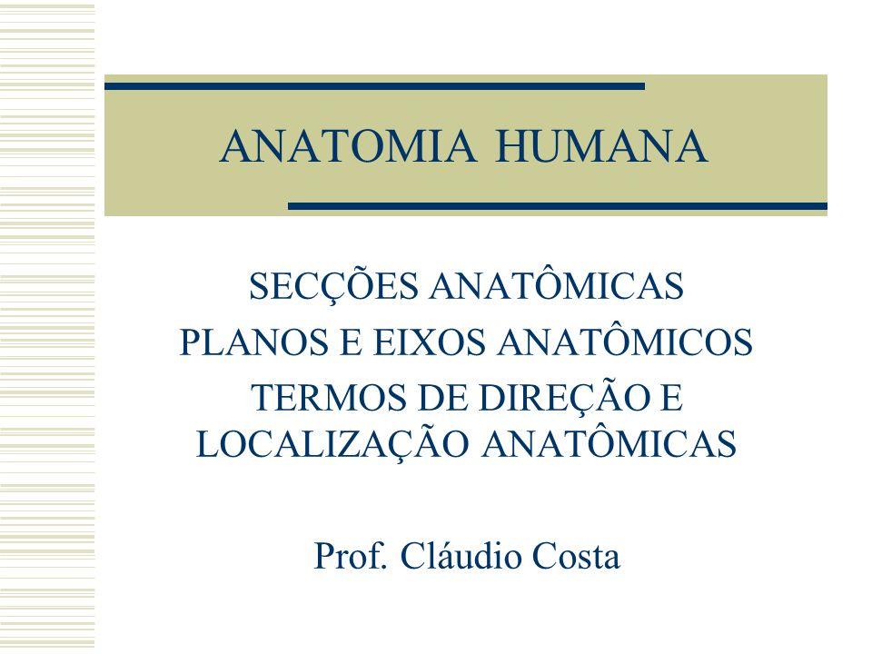 ANATOMIA HUMANA SECÇÕES ANATÔMICAS PLANOS E EIXOS ANATÔMICOS TERMOS DE DIREÇÃO E LOCALIZAÇÃO ANATÔMICAS Prof. Cláudio Costa