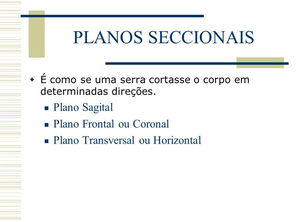 PLANOS SECCIONAIS  É como se uma serra cortasse o corpo em determinadas direções. Plano Sagital Plano Frontal ou Coronal Plano Transversal ou Horizon