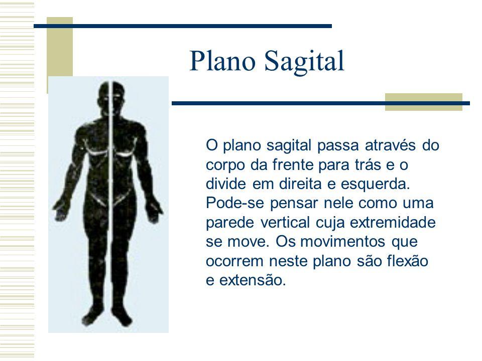 Plano Sagital O plano sagital passa através do corpo da frente para trás e o divide em direita e esquerda. Pode-se pensar nele como uma parede vertica