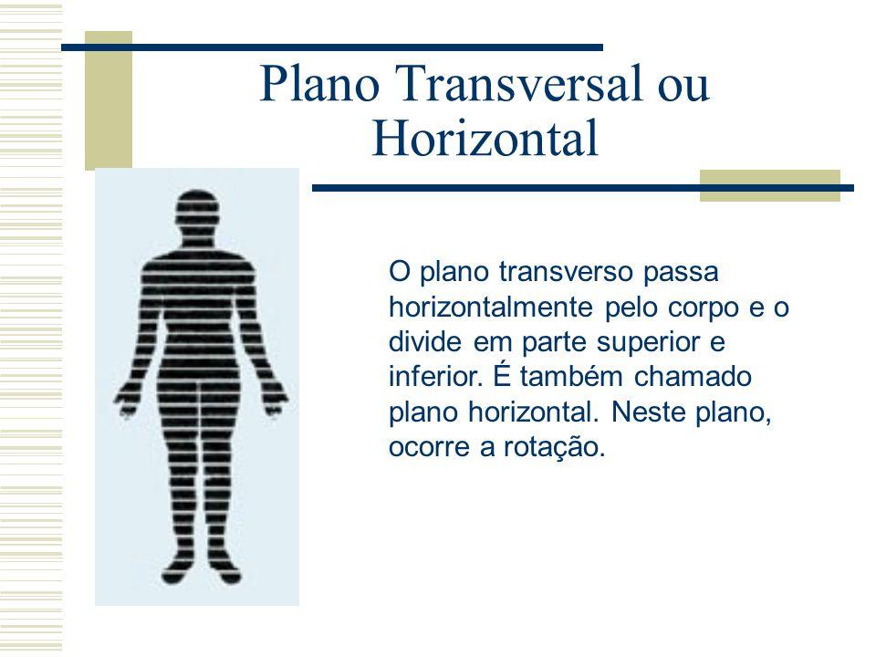 Plano Transversal ou Horizontal O plano transverso passa horizontalmente pelo corpo e o divide em parte superior e inferior. É também chamado plano ho