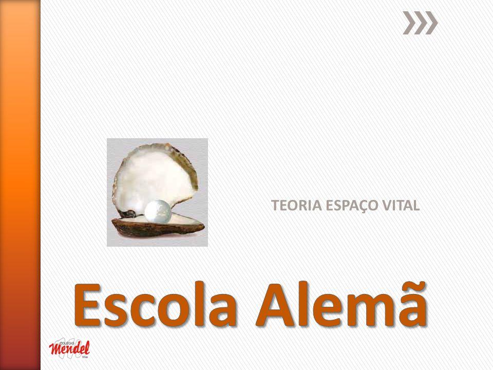 TEORIA ESPAÇO VITAL