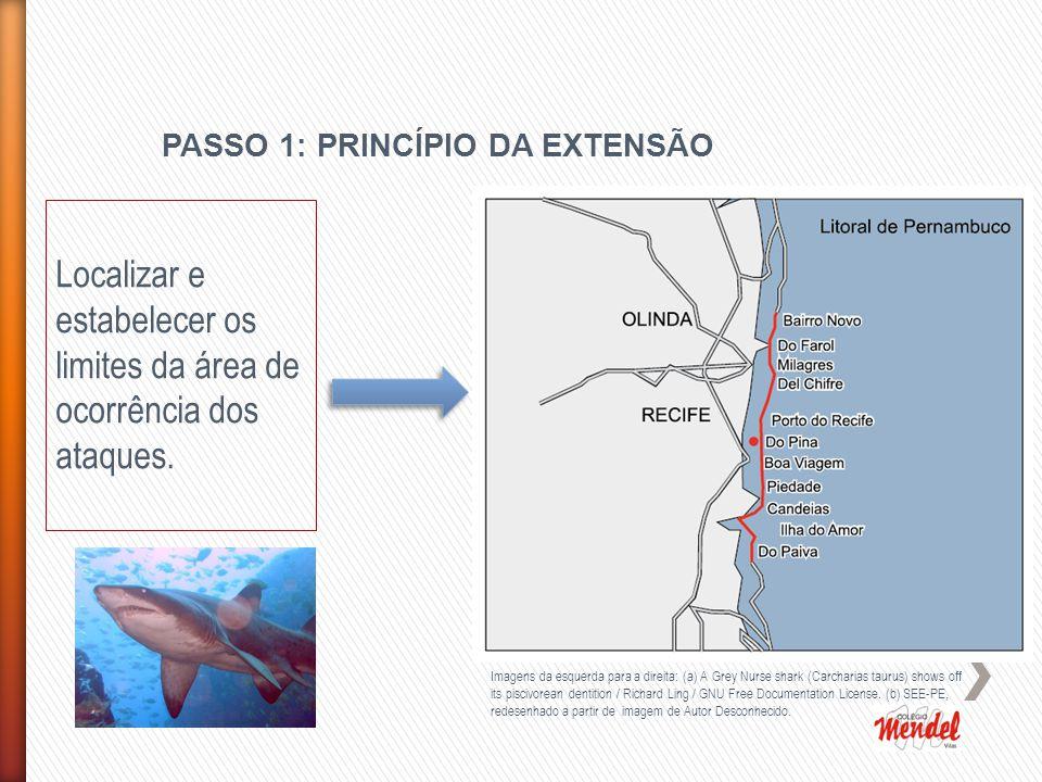 PASSO 1: PRINCÍPIO DA EXTENSÃO Imagens da esquerda para a direita: (a) A Grey Nurse shark (Carcharias taurus) shows off its piscivorean dentition / Richard Ling / GNU Free Documentation License.