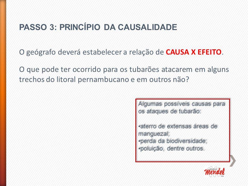 PASSO 3: PRINCÍPIO DA CAUSALIDADE O geógrafo deverá estabelecer a relação de CAUSA X EFEITO.