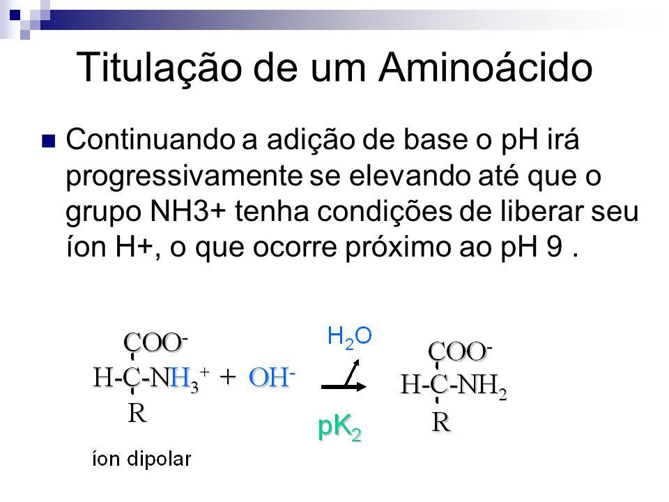 Titulação de um Aminoácido Continuando a adição de base o pH irá progressivamente se elevando até que o grupo NH3+ tenha condições de liberar seu íon