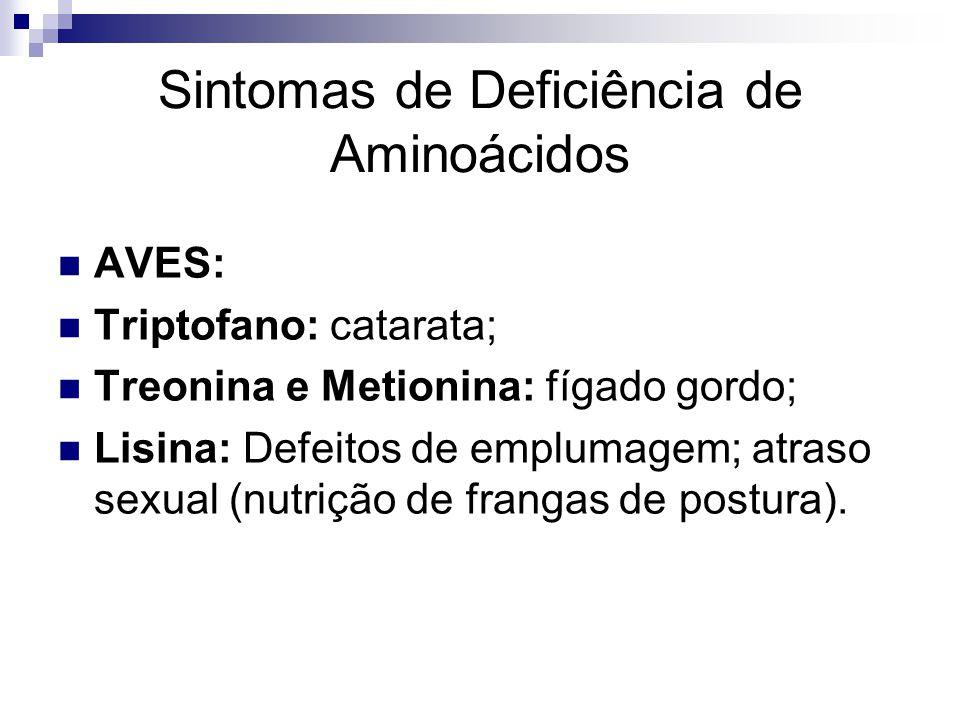 Sintomas de Deficiência de Aminoácidos AVES: Triptofano: catarata; Treonina e Metionina: fígado gordo; Lisina: Defeitos de emplumagem; atraso sexual (