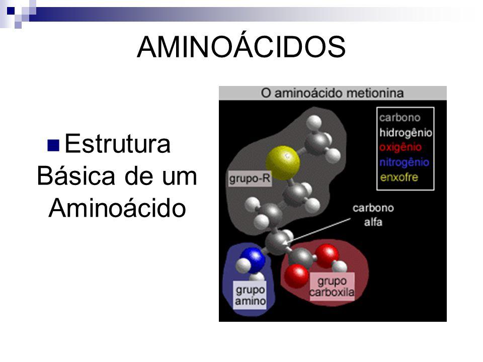 Estrutura Básica de um Aminoácido