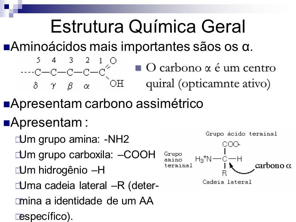 Estrutura Química Geral Aminoácidos mais importantes sãos os α. Apresentam carbono assimétrico Apresentam :  Um grupo amina: -NH2  Um grupo carboxil