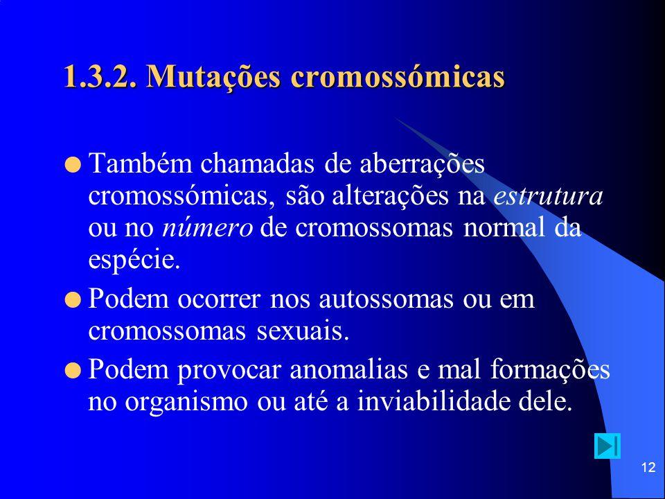 11 1.3.1. Mutações génicas Inserção e delecção  acontece quando um ou mais nucleótidos são adicionados ou removidos, respectivamente, ao DNA, modific