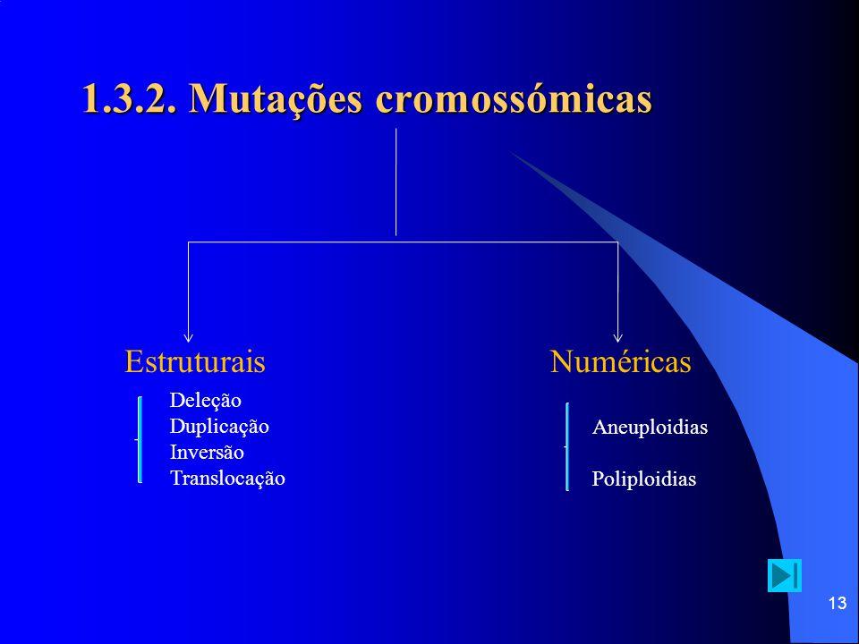 12 1.3.2. Mutações cromossómicas  Também chamadas de aberrações cromossómicas, são alterações na estrutura ou no número de cromossomas normal da espé