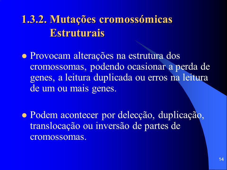 13 1.3.2. Mutações cromossómicas Estruturais Numéricas Deleção Duplicação Inversão Translocação Aneuploidias Poliploidias