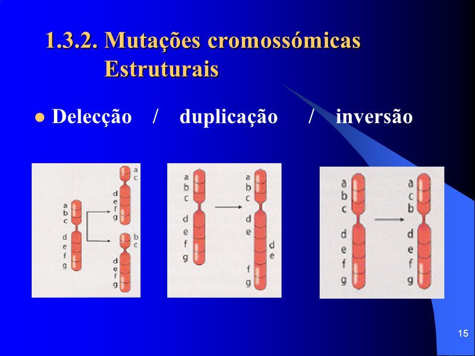 14 1.3.2. Mutações cromossómicas Estruturais Provocam alterações na estrutura dos cromossomas, podendo ocasionar a perda de genes, a leitura duplicada